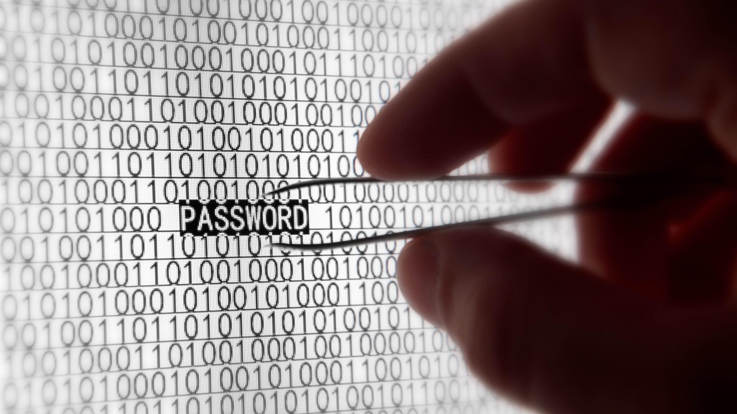 Psyomjesus, Steal password, CC BY-SA 4.0